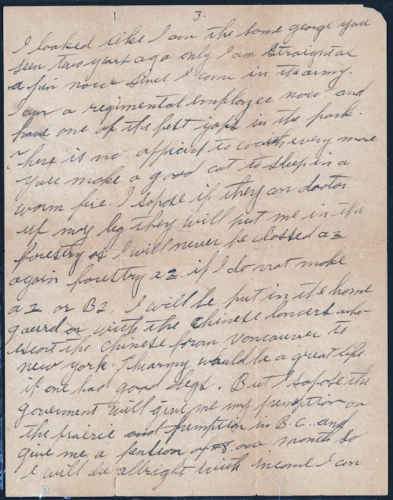 A Soldier's Letter Home - Page 3